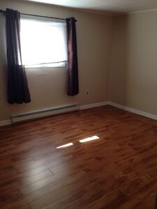 2 Bedroom Apt FOR RENT Deer Lake