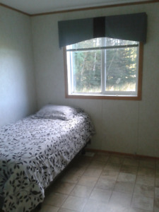 Room /Rooms For Rent Drayton Valley Area