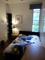 coloc 6 rooms, 5 min from métro, terrace on roof, cleaning lady
