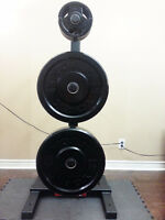 Commercial Grade Bumper Plate Olympic Weight Plate Tree