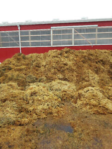 Free horse manure compost