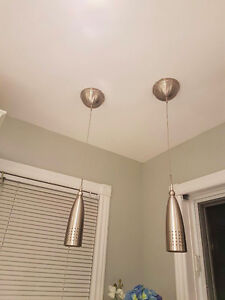 Pair Of Hanging Ceiling Lights - $30