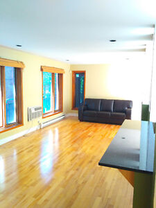 Beautiful Penthouse Condo - Downtown Montreal