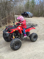 2011 ATV with Plow