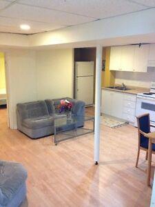 Basement Apartment- seprate entrance- Richmond Hill