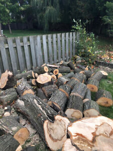 Maple Firewood/ logs for sale pick up only