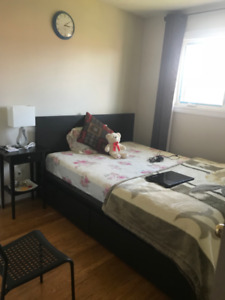 Furnished Single Room for Rent Brampton - Female Only
