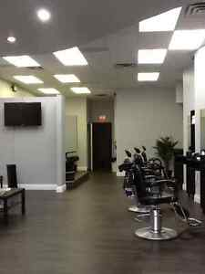 Hair Salon + Barber Shop Service In Cambridge Cambridge Kitchener Area image 3