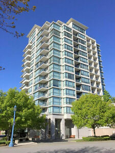 Richmond Oval Neighborhood - 2 Bedroom 2 Bath High-rise