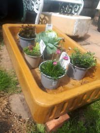 Large garden belfast sink planter