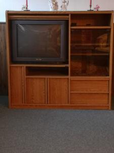 Entertainment Unit/ Cabinet