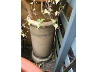 Victorian chimney pot garden plant stand