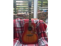 Laramie hummingbird guitar