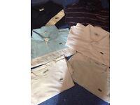 Men's Lacoste t-shirts