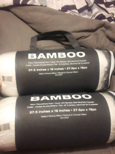 Brand New Bamboo Pillows