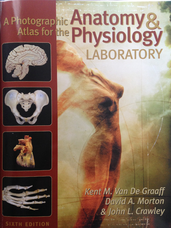 Photographic Atlas for Anatomy and Physiology Lab - 6th Edition ...