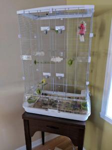 Cage d'oiseaux Vision avec perruche