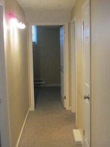 2 Bedroom Basement Apt, for 50 Plus  Tennant St. John's Newfoundland image 5
