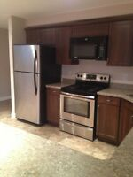 2 BEDROOM BASEMENT SUITE IN NEWER HOME-- gorgeous!