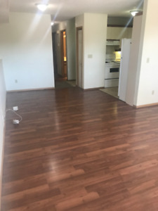 2 bedroom basement suite (Water Included) REDUCED