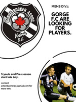 Looking for Male Soccer players.