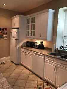Stunning One bedroom with New washer and dryer Cambridge Kitchener Area image 2