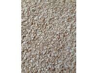 4m x 2.3m biscuit coloured carpet