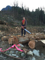 Blake Forrest Tree Care Inc - Tree Removal Experts-