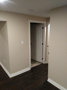 Fix and Tint Home Renovation