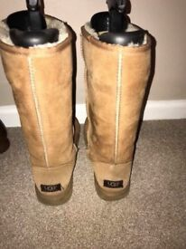 Classic uggs chestnut size 6.5