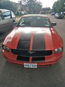 2005 Mustang Convertible In Excellent Condition