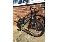 Custom bmx with profile mini