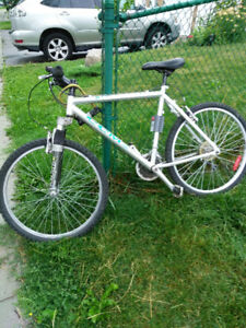Adult Bicycle for sale