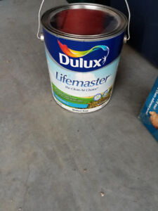Dulux Non-tinted Eggshell paint