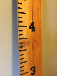 Ruler Growth Charts for kids Strathcona County Edmonton Area image 4
