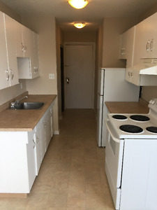 Two-bedroom apartment for rent