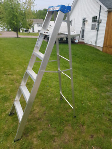 6ft Ladder