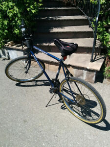 Triumph Ravine Bicycle - Mint Condition 20yrs