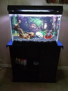 Full aquarium setup BUY OR TRADE