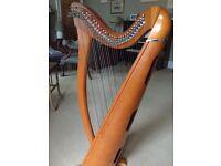 Clarsach 34 string harp