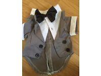Wedding suit small dog £10