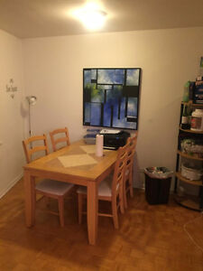 Downtown/Plateau (3 bedrooms, 2 bathrooms) Montreal Apartment