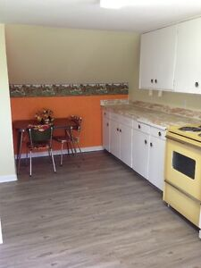 large furnished studio apartment available Feb 1st