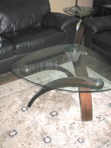 Contemporary Coffee Tables (2) glass, wood, stainless steel