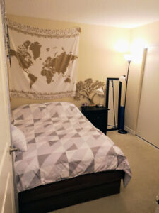 Queen West - Room Sublet (3 weeks length: April 3-22nd) - $500