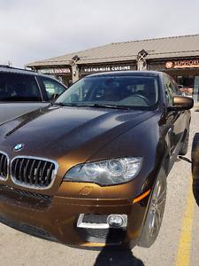 2013 BMW X6 SUV, Crossover