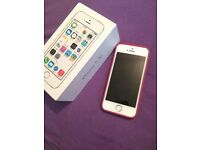 iPhone 5s, unlocked, immaculate