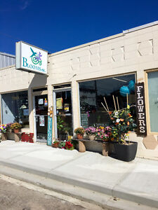 Commercial space for sale in Rimbey