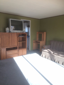 Furnished Trailer for Sale at Driftwood Trailer Court