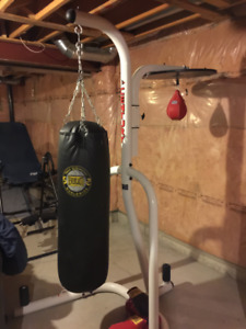 Everlast Heavy Punching Bag, Speed Bag, 6 Gloves and stand